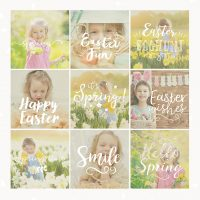 Spring Photography Overlays