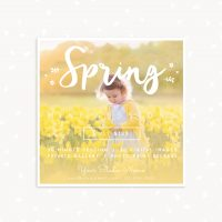Spring mini sessions template square