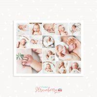 8x10 Newborn collage template close ups